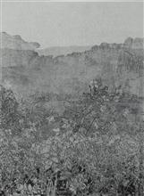 《草衣No.8》,絹版, 140x103cm,2011