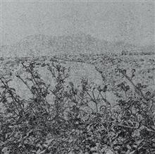 《草衣No.2》,絹印,103x103cm,2010