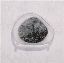 《水花園No.4》,玻璃、不鏽鋼,60×60×12cm,2015
