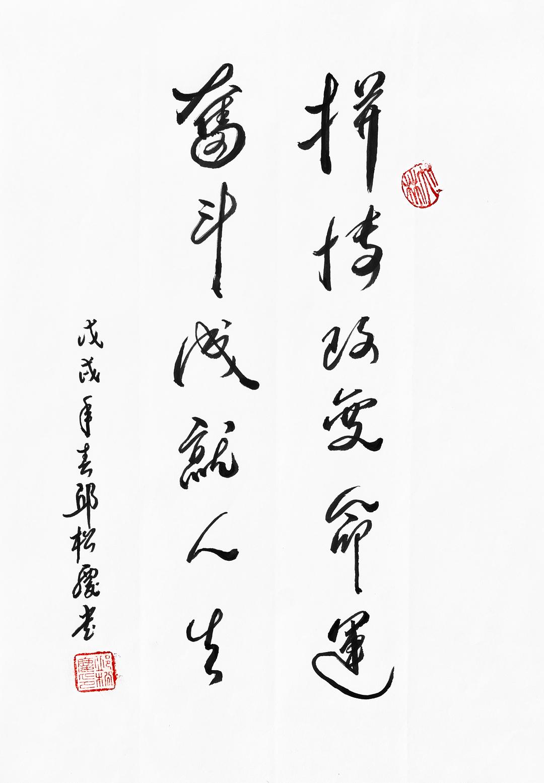 《拼搏改变命运 奋斗成就人生》29.7x21cm 行书 纸本墨笔 2018年
