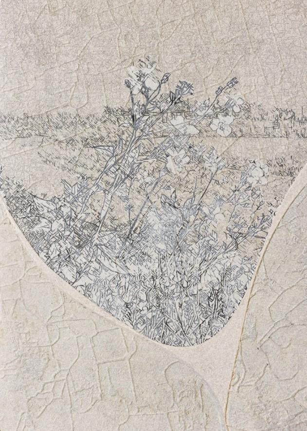 《草衣No.31》, 紙漿、併用版,90x65cm,2014