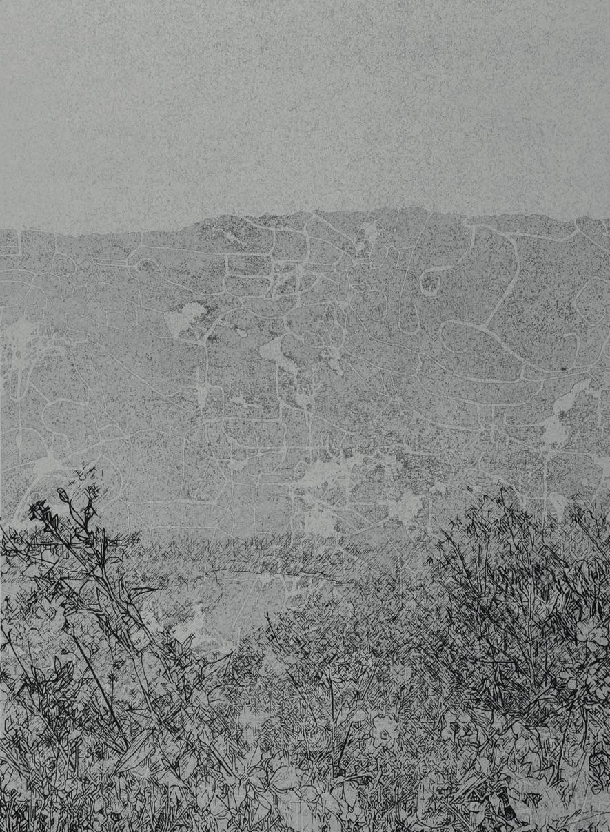 《草衣No.9》,絹版,140x103cm,2011