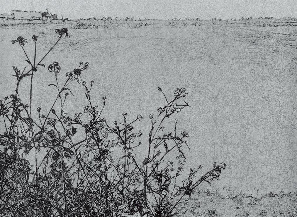 《草衣No.10》,絹印,103x140cm,2010