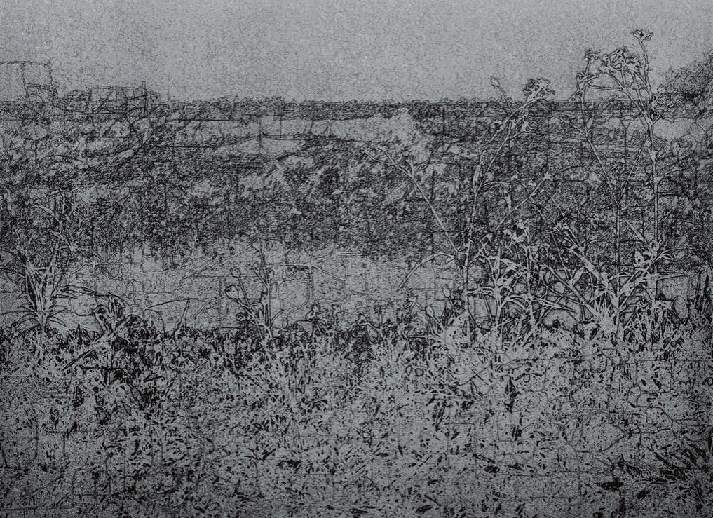 《草衣No.11-1》,絹印,103x140cm,2010
