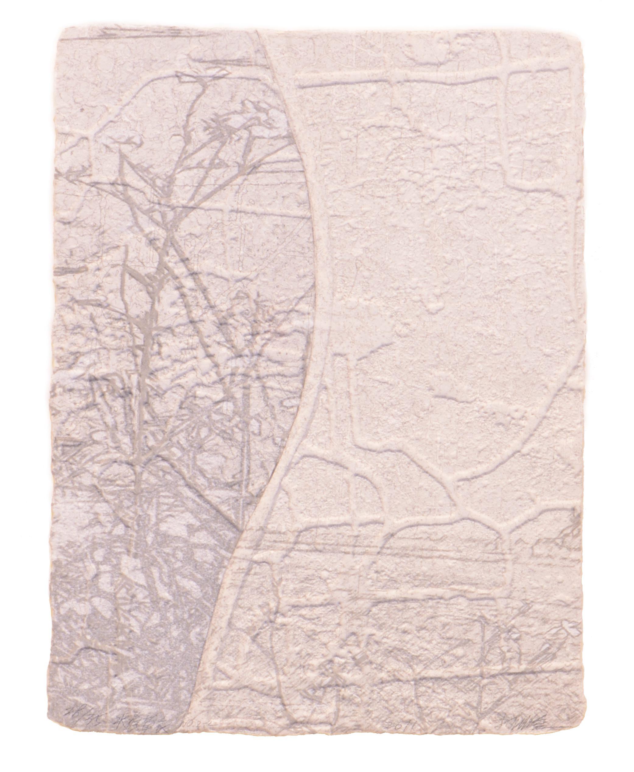 《水痕草衣No.2-2》,絹版、凹版,25×18cm,2011